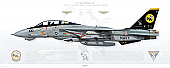 F-14D Tomcat VF-31 Tomcatters, AJ100