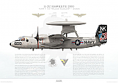 E-2C Hawkeye 2000 VAW-113 Black Eagles, NK600