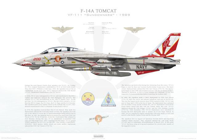 Tomcat US Navy VF-111 Sundowners CVW-15 CVN-70 USS Hogan Wings Grumman F-14A